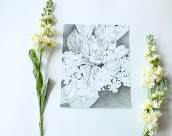 Tulips Pencil Drawing - 8x10 print