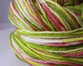 Mexican Bird Of Paradise Self-Striping Superwash Sock Yarn