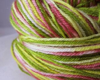 Mexican Bird Of Paradise Self-Striping Superwash Sock Yarn