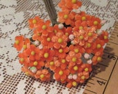 Czech Republic Velvet Forget Me Nots Millinery Fabric Flowers Orange