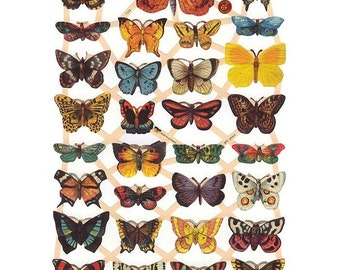 Germany Paper Scraps Lithographed Die Cut Victorian Butterflies  7336