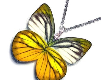 Real Butterfly Wing Necklace / Pendant (WHOLE Cepora Nadina Butterfly - W058)