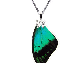 Real Butterfly Wing Necklace (Papilio Lorquinianus Forewing - N015)