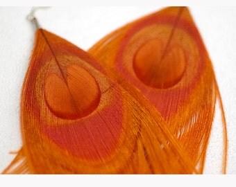 SALE-Orange Peacock Feather Earrings