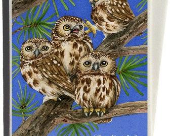 Saw Whet Owls Greeting Card by Tracy Lizotte