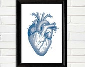 Blue Anatomical HEART art print wall decor vintage illustration instant printable digital download jpg file 4x6, 5x7, 8x10, 11x14, 12x16