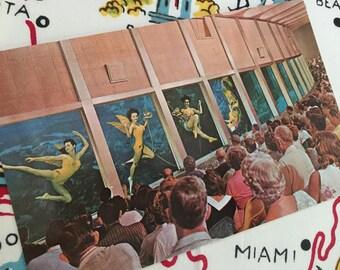 Vintage Weeki Wachee Florida mermaids postcard 1960s chrome souvenir Floridiana kitsch underwater auditorium