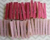 2 Dozen Pink And Light Pink Mix Glitter Clothespins