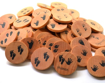 Memory Game Animal Tracks