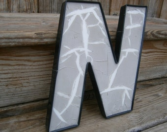 Industrial Plastic Letter - N - Salvage Letter - Marquee Letter
