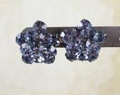 Vintage Baby Blue Rhinestone Cluster Screw Back Earrings