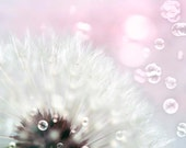 Baby Girl Nursery Decor, Pink Flower Photo, Dandelion Print, Bubbles, Flower Photography, Nursery Wall Art