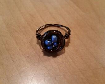 Blue bird egg ring.