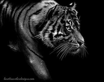ART PRINT Tiger Drawing Tiger Art Wildlife Art Scratchboard Drawing Unframed Art Scratchboard Art Ready To Frame Animal Art Animal Drawing