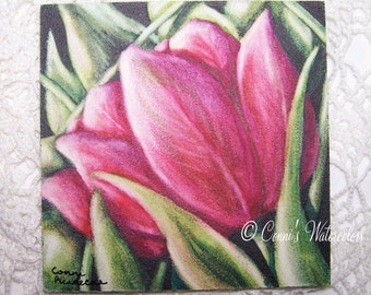 Original Tulip Watercolor Painting- Pink Flower- Floral Nature SFA Signed with COA 4 x 4 Flower Garden Art