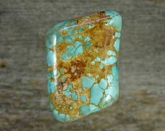 Turquoise cabochon number 8  mine, A-69