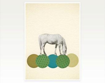 Horse Art. Animal Art Print - Graze