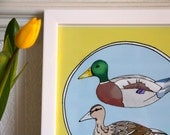 Duck Art Print, Colourful Duck illustration A4