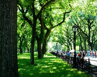 Literary Walk at Central Park, New York City Photography Print, NYC Wall Art