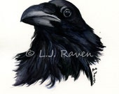 Raven -  Original Watercolor Painting, painted by J.L. Raven - 8x6inches