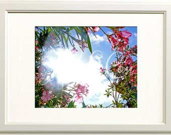 Flowers and Sunshine Photograph 11x14 Print
