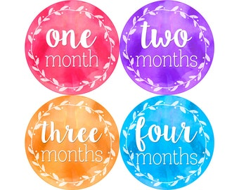 Baby Month Stickers, Monthly Baby Stickers, Monthly Photo Stickers, Girls First Year Photo Props, Baby Shower Gift, Watercolors (G234)