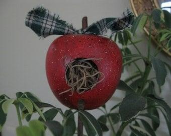 Teacher Appreciation Gift, Plant Poke- Apple Bird House- Teachers gift- Mothers Day Gift- Wooden Apple Birdhouse- Decorative Apple Birdhouse