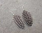 Guinea Hen Wing Quill Feather Earrings