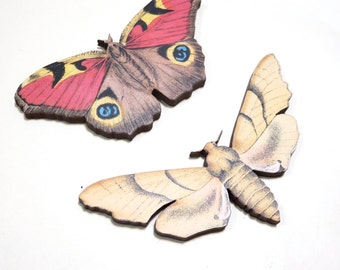 Wooden Moth Cabochon Set - Noir - Vintage Paper Badge Paper Image Butterfly 2