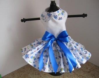 Dog Dress  XS Blue Butterflies  By Nina's Couture Closet