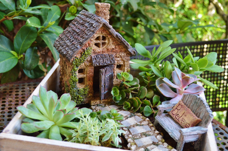 Miniature Garden Cottage In Wooden Planter Herb Garden Kit