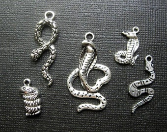 Snake Charm Collection in Silver Tone - C2166