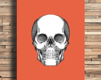 Skull With Pop Color, Vintage Engraving, Simplistic, Cute, Minimalist, Colorful Office, Kitchen, Home, Nursery Decor, Unique Gift, Poster