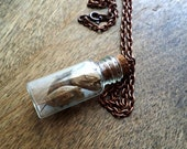 Dried Flowers in Glass Vial Necklace, Glass Bottle, Dry Flower Necklace