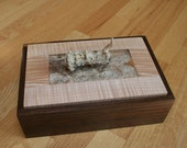 Jewelry, Keepsake, Valet Box, Black Walnut, Fiddleback Maple, Antler, Hand Made SB00