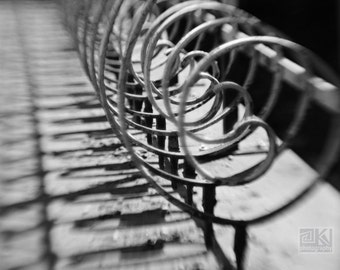Architecture art, Fence photography, Wrought Iron Fence, Iron railing, Urban wall art, Minimalist decor, Black and White, Rustic home décor