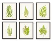 Vintage Ferns Print Set No. 1 - Botanical Print - Giclee Canvas Art Print - Antique Botanical Prints - Posters - Wall Art - Fern Prints