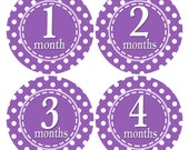Baby Month Stickers, 1st Year Sticker, Purple and White, Polka Dot Sticker, Month by Month, Purple Baby Stickers, Monthly Baby Sticker (370)