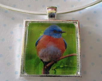 Bluebird Pendant or Scarf Ring