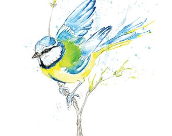 Giclee Fine Art Print: Blue Tit Garden Bird Watercolour Painting