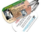Dog Tags - Florida Driver's License Pet Tag - Personalized Pet Tag, Custom Dog Tags, Cat ID Tag, Dog License ID, Dog License Tag, Dog ID Tag