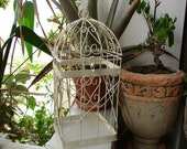 shabby chic,small,vintage ivory wire bird,plant cage-Victorian style-with hinged lid & hanging chain