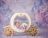 Princess Cinderella Carriage Prop, Carriage Prop, Princess Photo Prop, Cinderella Carriage Prop, Newborn Photo Prop, Photography Prop