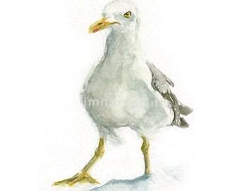 Watercolor Seagull III, Seagull III Print