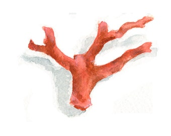 Watercolor Red Coral, Red Coral Print