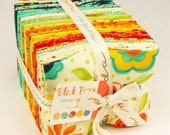 Block Party Fat Quarter Bundle by Sandy Gervais for Moda - One Fat Quarter Bundle 39 SKUS - 17810AB