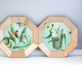 Decorative decoupage botanical plates by moonlighting interiors