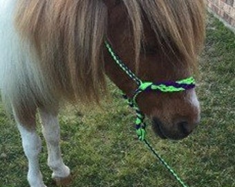 Miniature horse shetland pony braided halter and lead rope