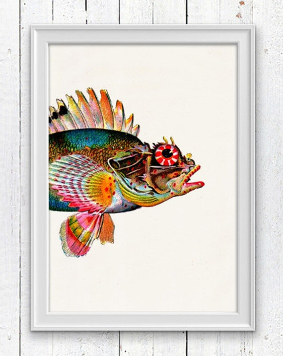 Sea Fish Monkfish - Wall decor poster  , sea life print- Marine  sea life illustration A4 print SPA01