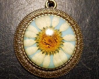 Daisy Flower on Blue Preserved Specimen Necklace